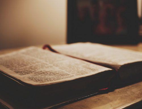 Novena į Šventąją Dvasią: 5 diena